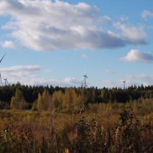 Marjakeitaan ja Paholammin tuulivoimapuistohankkeiden sähköinen yleisötilaisuus tiistaina 8.6.2021 klo 18-20